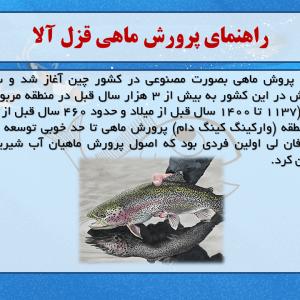 پاورپوینت کارآفرینی پرورش ماهی های خوراکی